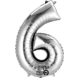 Numerofoliopallo 6