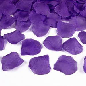 Ruusun terälehdet violetti