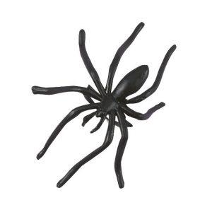 Koristehämähäkit