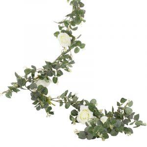 Vihreä köynnös valkoisilla ruusuilla