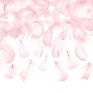 Vaaleanpunaiset höyhenet