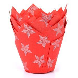 Punainen tulppaanivuoka lehdillä