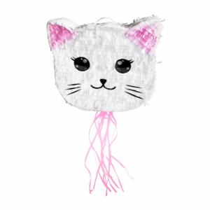 Kissa pinjata